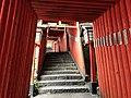 Toriis of Taikodani Inari Shrine 4.jpg
