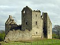 Torwood Castle ruin April 2007 - geograph.org.uk - 435251.jpg