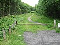 Track leading from car park through Thornden Wood - geograph.org.uk - 478666.jpg
