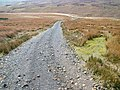 Track on Eggleston Moor - geograph.org.uk - 763547.jpg