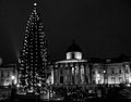 Trafalgar Square - Tree and Natl Gallery.jpg