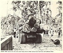 U.S.DOC(1965) Liberia. Money Trees