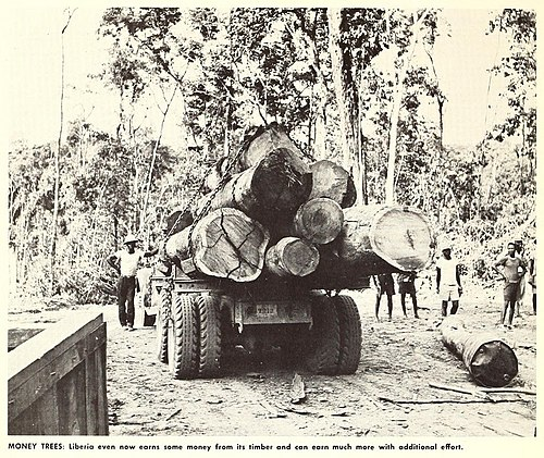 Loggers and logging truck, early 1960s U.S.DOC(1965) Liberia. Money Trees.jpg