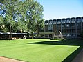 UNSW Library Lawn.jpg