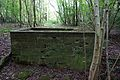 Unidentified structure in woodland 3.jpg