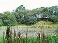 Unnamed Lochan near Aviemore - geograph.org.uk - 214095.jpg