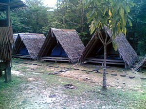 Papar District - Utan Paradise Jungle Camp.