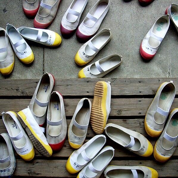 Japanese Indoor School Shoes