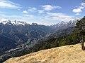 Val Pesarina vista da Pulìsias.jpg
