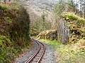 Vale of Rheidol Railway - geograph.org.uk - 210489.jpg