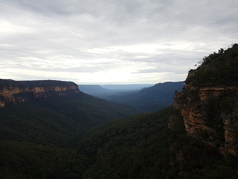 File:Valley in the Blue Mountains.jpg