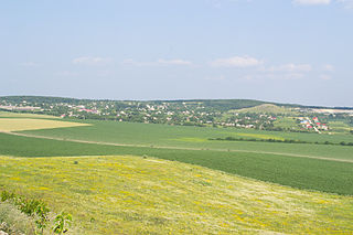 Verbka village in Kamianets-Podilskyi Raion.jpg