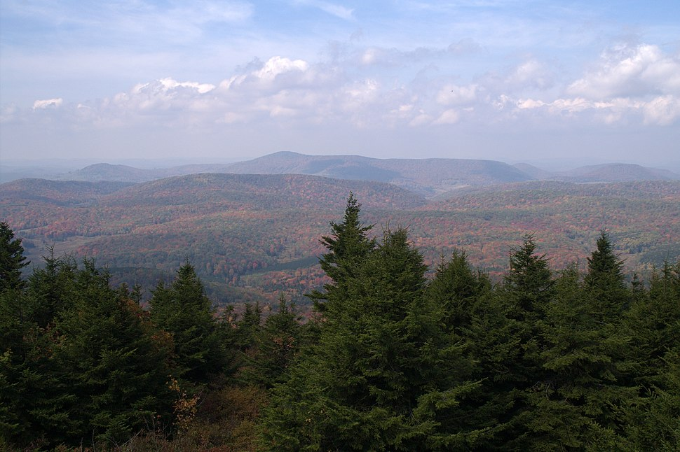 View from the observation tower atop of Spruce Knob WV