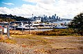 View of downtown Seattle from Ursula Judkins Viewpoint.jpg