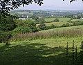 View towards Lezant - geograph.org.uk - 459181.jpg
