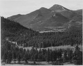 "View with trees in foreground, barren mountains in background, ""In Rocky Mountain National Park,"" Colorado, 1933 - 1942 - NARA - 519971.tif"