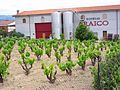 Villabuena - Bodegas Araico 3.jpg