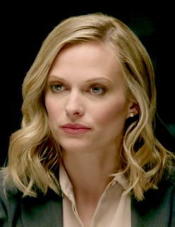 Vinessa Shaw American actress