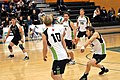 Volleyball UFV men vs COTR 14 (11092268285).jpg