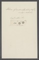 Volvox grandinella - - Print - Iconographia Zoologica - Special Collections University of Amsterdam - UBAINV0274 113 23 0010.tif