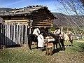 WRSP Daniel Boone Film Shoot (6350851074).jpg