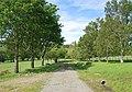 Waitahuna Cemetery Road.JPG