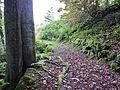 Wanderweg - panoramio (40).jpg