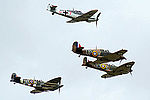 Warbirds (5102851178).jpg