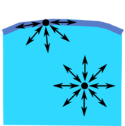 Diagram of the forces on a molecule of liquid.