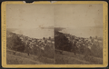 Watkins and Seneca Lake, by Purviance, W. T. (William T.).png