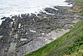 Wave-cut platform - geograph.org.uk - 1342545.jpg