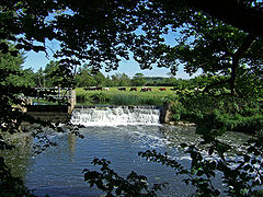Wier on river with cows in the field beyond.