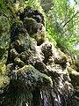WikiProjekt Landstreicher Wasserfall Hinang 43.jpg