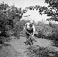 Willem van de Poll aan het werk in de tuin in Waalre, Bestanddeelnr 252-1373.jpg