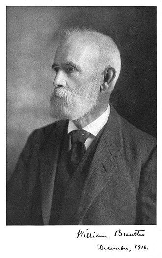 William Brewster (ornithologist) - Image: William Brewster ornithologist