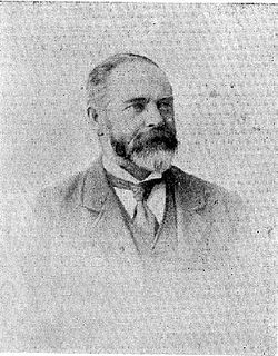 William Wilson McCardle New Zealand politician