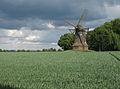 Windmühle in Wüllen, Quantwick 29.jpg
