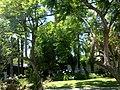Winnetka, Los Angeles, CA, USA - panoramio (42).jpg