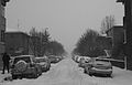 Winter (2231560454).jpg