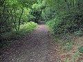 Woodland Path - geograph.org.uk - 286789.jpg