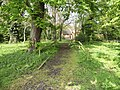 Woodland path, Whitewebbs, Enfield - geograph.org.uk - 1260687.jpg