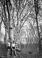 Woods, men, tableau, summer, bathing suit Fortepan 11354.jpg