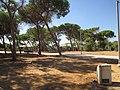 Woods Park in Tel Aviv.JPG