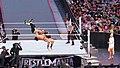 WrestleMania 31 2015-03-29 18-13-59 ILCE-6000 8427 DxO (17891550582).jpg