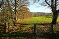 Wye Valley Walk at Dolyrerw - geograph.org.uk - 1059816.jpg