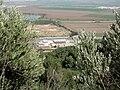 Yagur – Nesher, the Green Path – Mount Carmel 093.JPG
