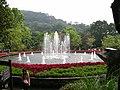 Yang Ming Flower-clock Park.JPG