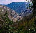 Zaovine, Serbia - panoramio (14).jpg