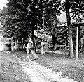 """""""Kozuc"""" (kozolec) (ima ostrvi, štange (pokončne) in late). Spredaj je """"laz"""", na njem stoji in """"obeša"""" snop na late, Svino 1951.jpg"""