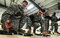 """""""Timber!"""" Paratroopers cut down trees with explosives 130321-F-LX370-381.jpg"""